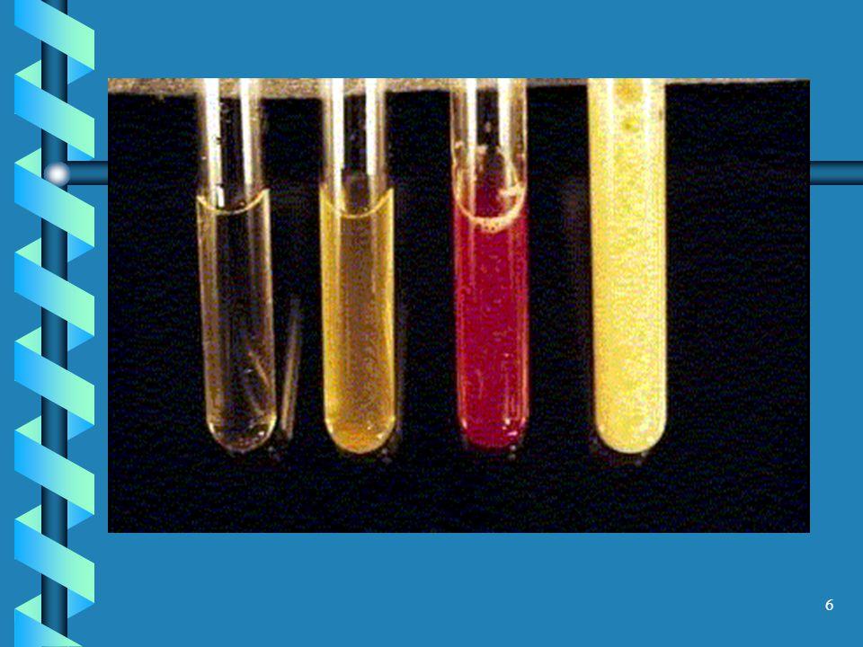 7 2.Aspecto: normalmente é transparente. Pode ser turvo por: piúrias, fosfatúrias, proteinúrias 3.