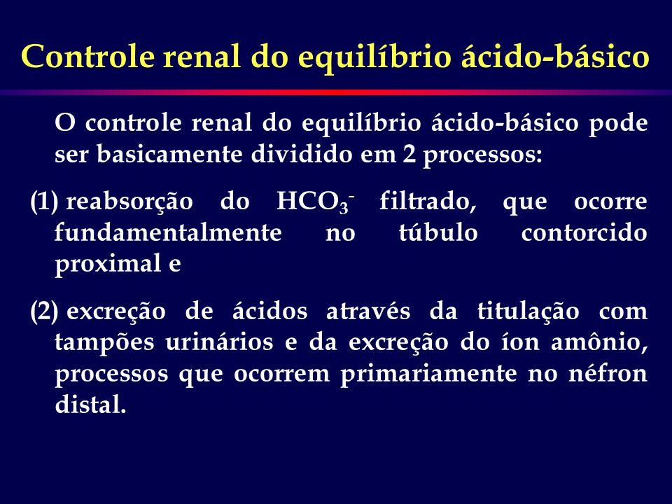 Controle renal do equilíbrio ácido-básico O controle renal do equilíbrio ácido-básico pode ser basicamente dividido em 2 processos: (1) reabsorção do