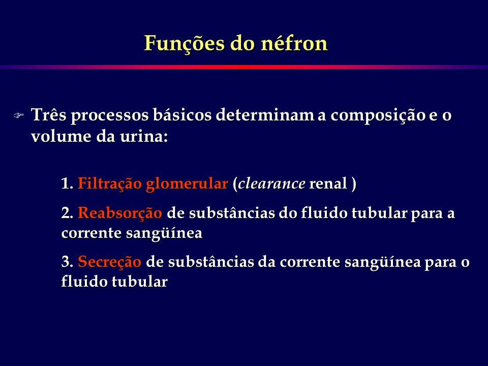 F Três processos básicos determinam a composição e o volume da urina: 1. Filtração glomerular ( clearance renal ) 2. Reabsorção de substâncias do flui