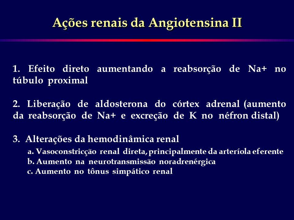 Ações renais da Angiotensina II 1. Efeito direto aumentando a reabsorção de Na+ no túbulo proximal 2. Liberação de aldosterona do córtex adrenal (aume