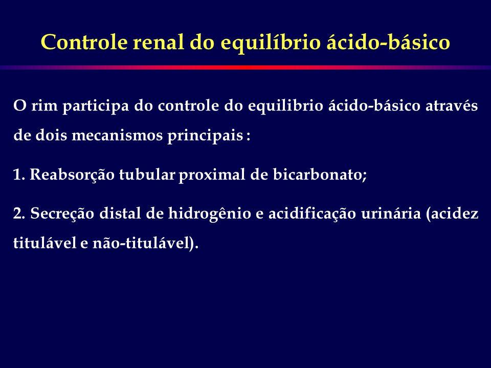 Controle renal do equilíbrio ácido-básico O rim participa do controle do equilibrio ácido-básico através de dois mecanismos principais : 1. Reabsorção