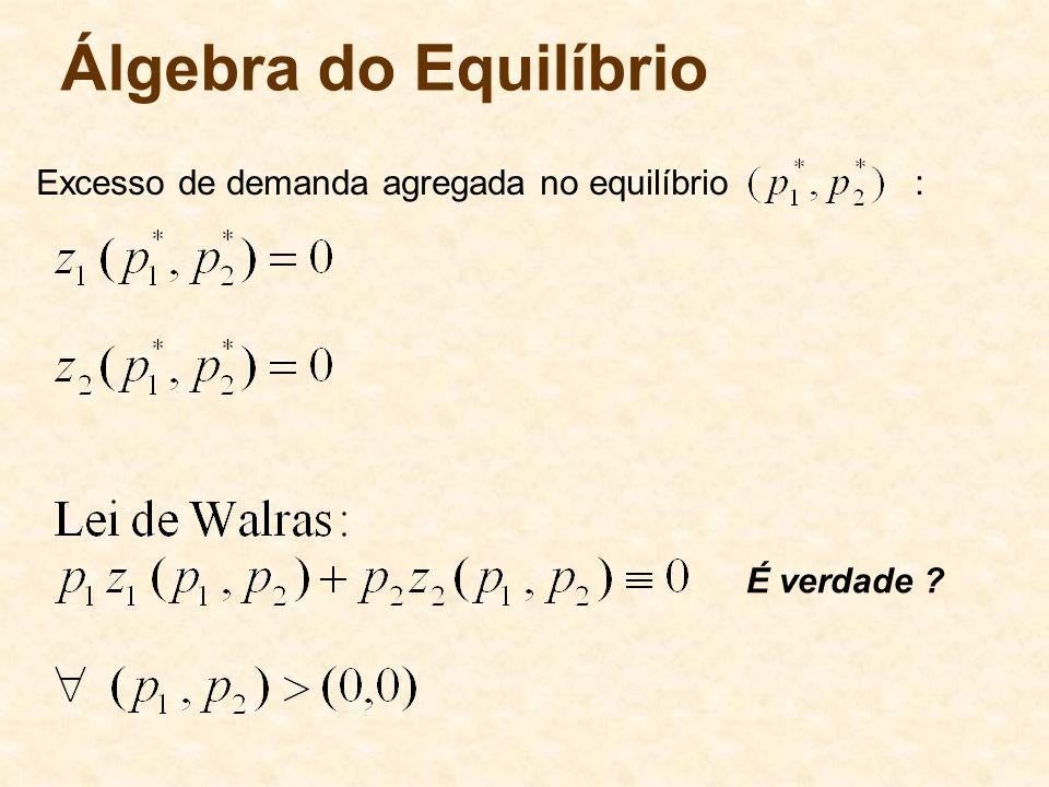 Álgebra do Equilíbrio Excesso de demanda agregada no equilíbrio : É verdade ?