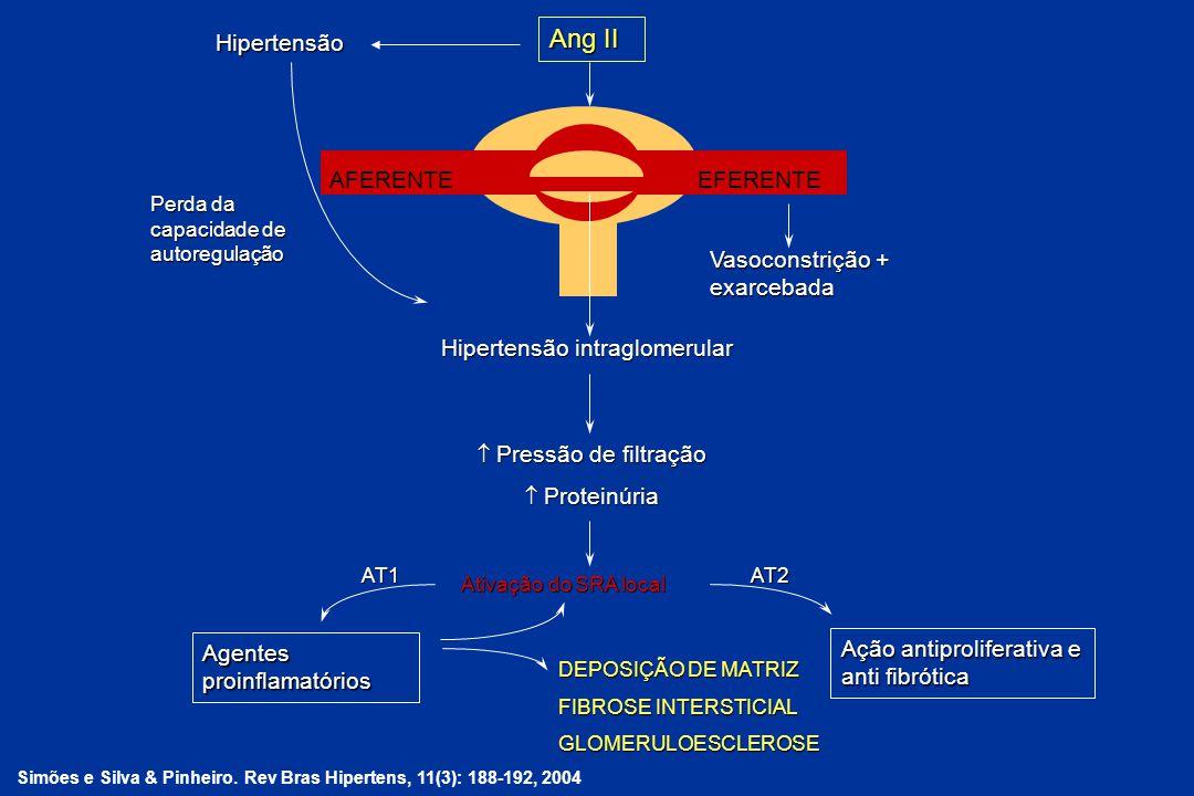 AFERENTEEFERENTE Hipertensão intraglomerular Vasoconstrição + exarcebada Pressão de filtração Pressão de filtração Proteinúria Proteinúria Ativação do