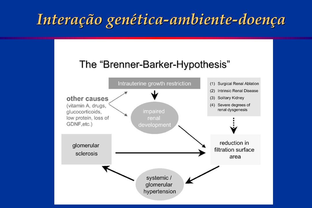 Interação genética-ambiente-doença