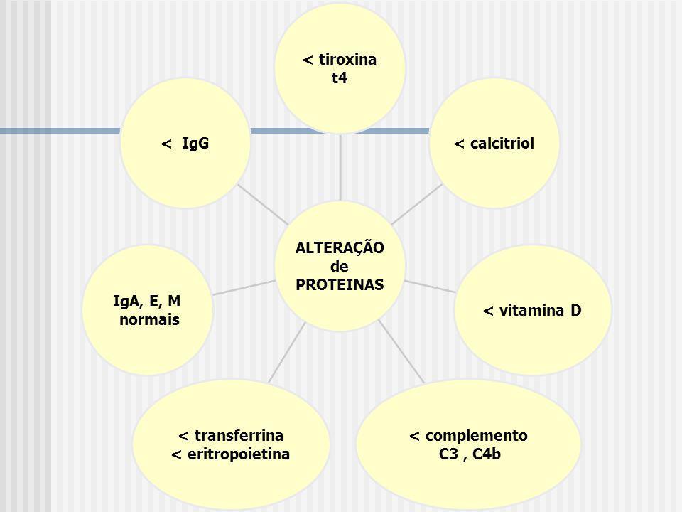 ALTERAÇÃO de PROTEINAS < tiroxina t4 < calcitriol< vitamina D < complemento C3, C4b < transferrina < eritropoietina IgA, E, M normais < IgG