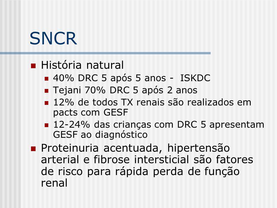 SNCR História natural 40% DRC 5 após 5 anos - ISKDC Tejani 70% DRC 5 após 2 anos 12% de todos TX renais são realizados em pacts com GESF 12-24% das cr
