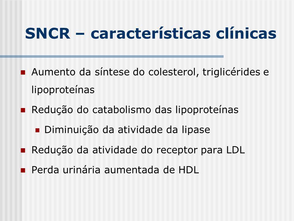 Aumento da síntese do colesterol, triglicérides e lipoproteínas Redução do catabolismo das lipoproteínas Diminuição da atividade da lipase Redução da