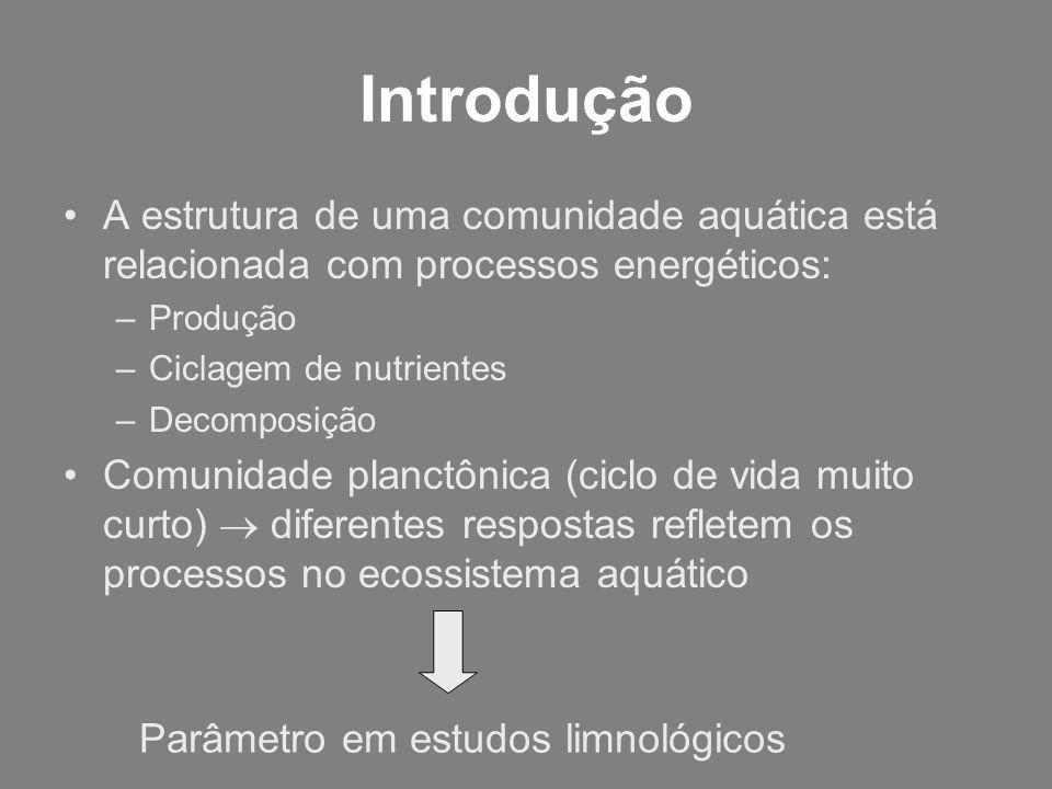Introdução A estrutura de uma comunidade aquática está relacionada com processos energéticos: –Produção –Ciclagem de nutrientes –Decomposição Comunida