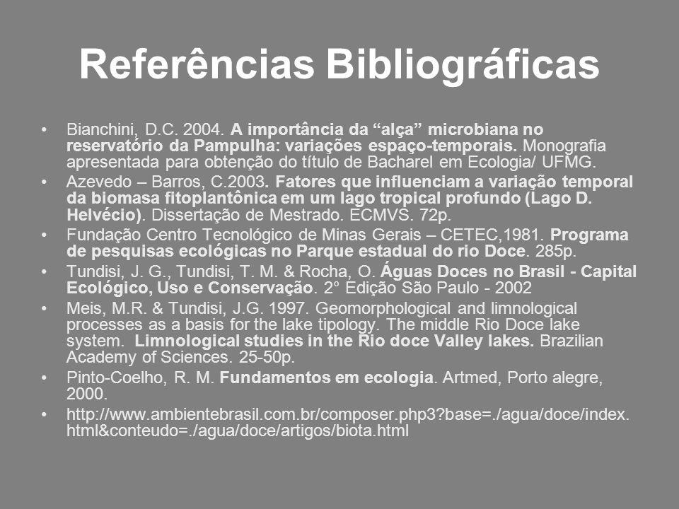 Referências Bibliográficas Bianchini, D.C. 2004. A importância da alça microbiana no reservatório da Pampulha: variações espaço-temporais. Monografia