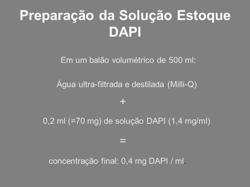 Preparação da Solução Estoque DAPI Em um balão volumétrico de 500 ml: Água ultra-filtrada e destilada (Milli-Q) 0,2 ml (=70 mg) de solução DAPI (1,4 m