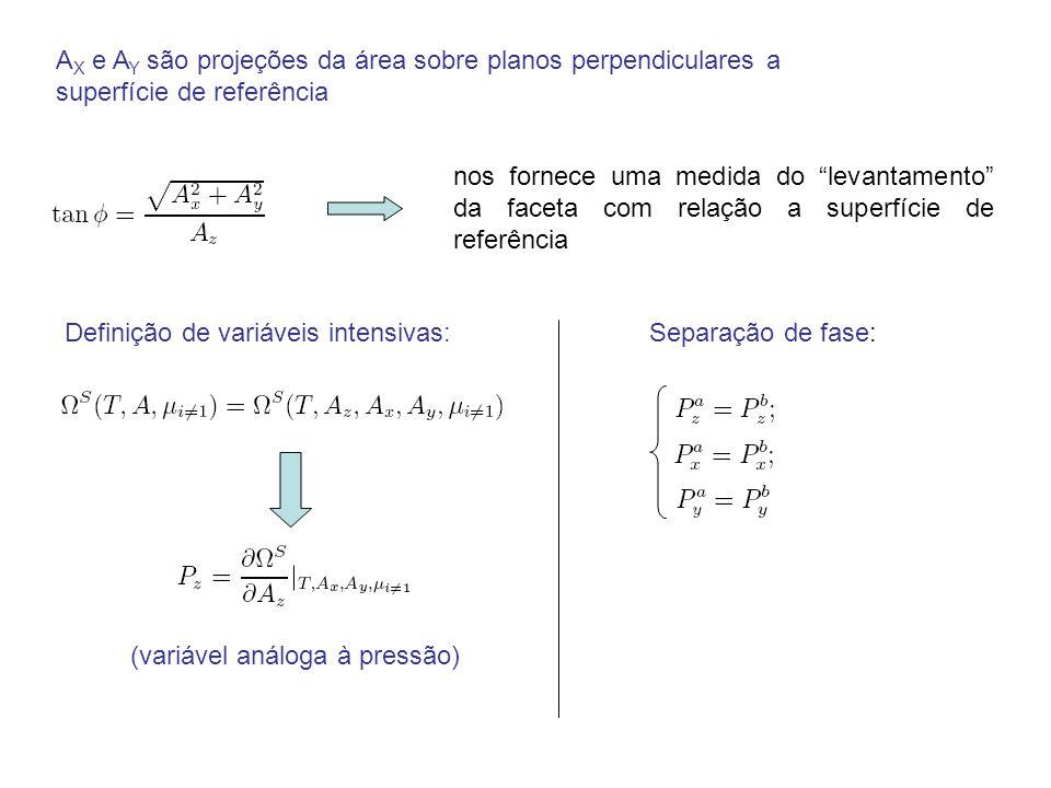 A X e A Y são projeções da área sobre planos perpendiculares a superfície de referência nos fornece uma medida do levantamento da faceta com relação a superfície de referência Definição de variáveis intensivas: (variável análoga à pressão) Separação de fase: