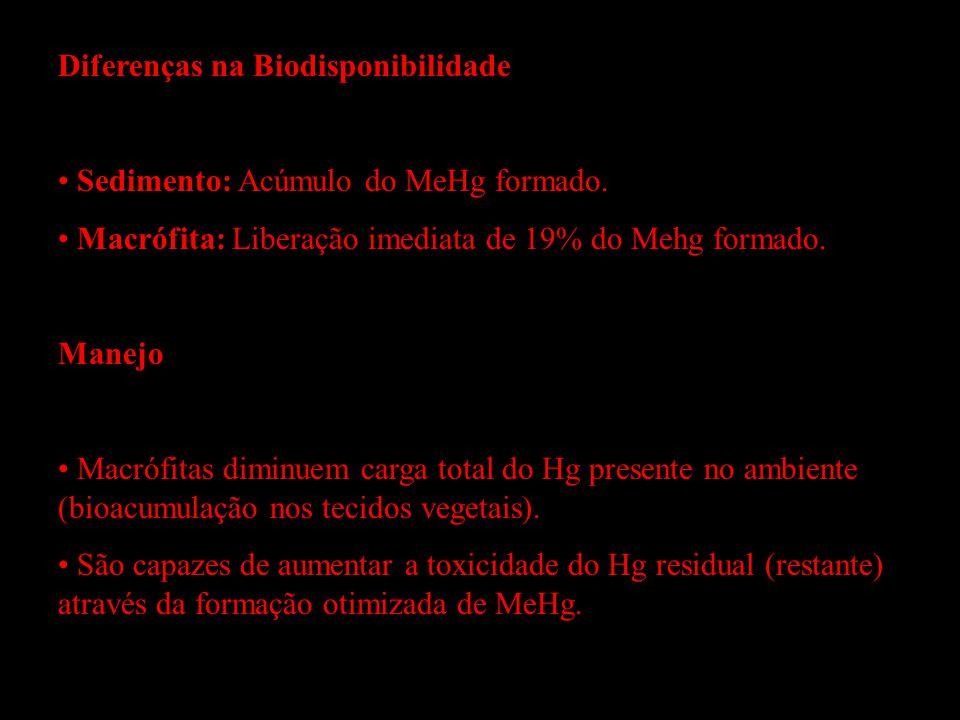Diferenças na Biodisponibilidade Sedimento: Acúmulo do MeHg formado. Macrófita: Liberação imediata de 19% do Mehg formado. Manejo Macrófitas diminuem
