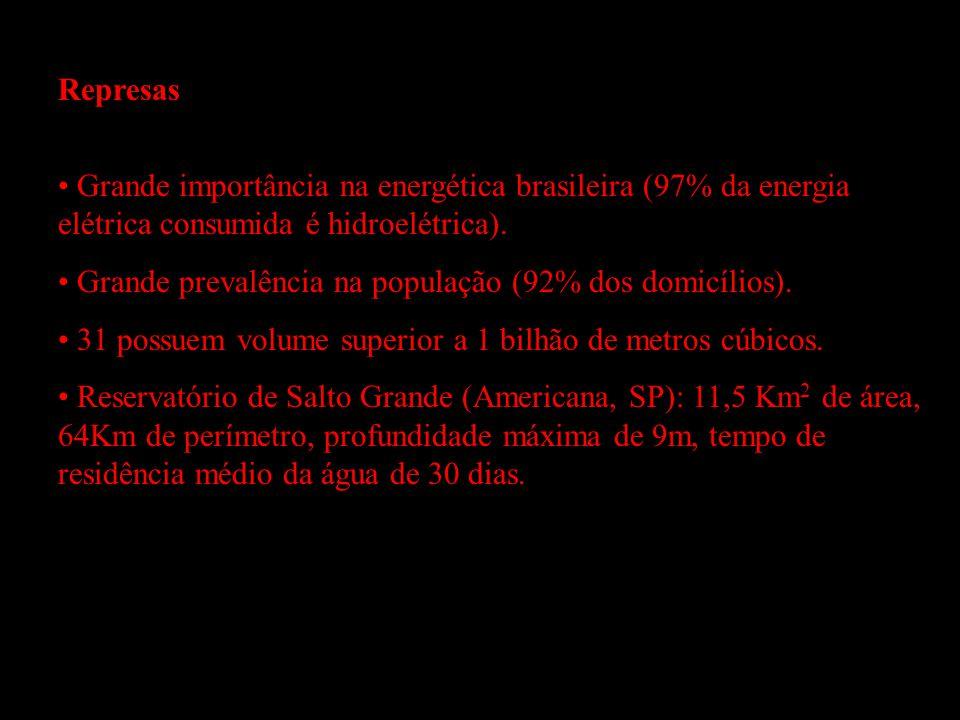 Represas Grande importância na energética brasileira (97% da energia elétrica consumida é hidroelétrica). Grande prevalência na população (92% dos dom