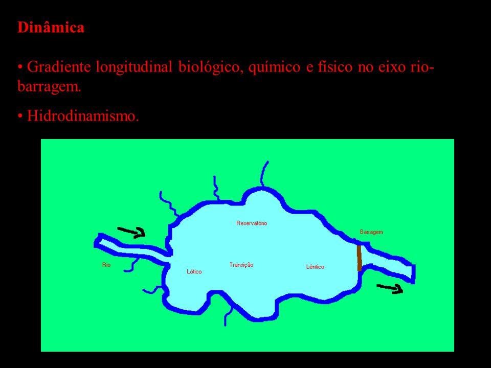 Dinâmica Gradiente longitudinal biológico, químico e físico no eixo rio- barragem. Hidrodinamismo.