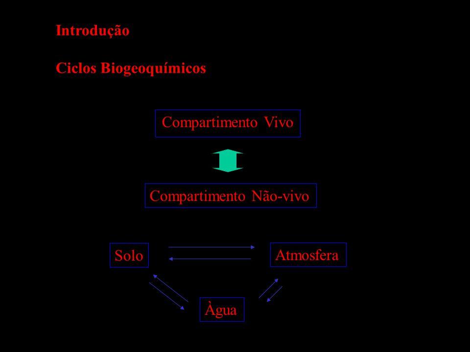 Introdução Ciclos Biogeoquímicos Compartimento Vivo Compartimento Não-vivo Solo Àgua Atmosfera
