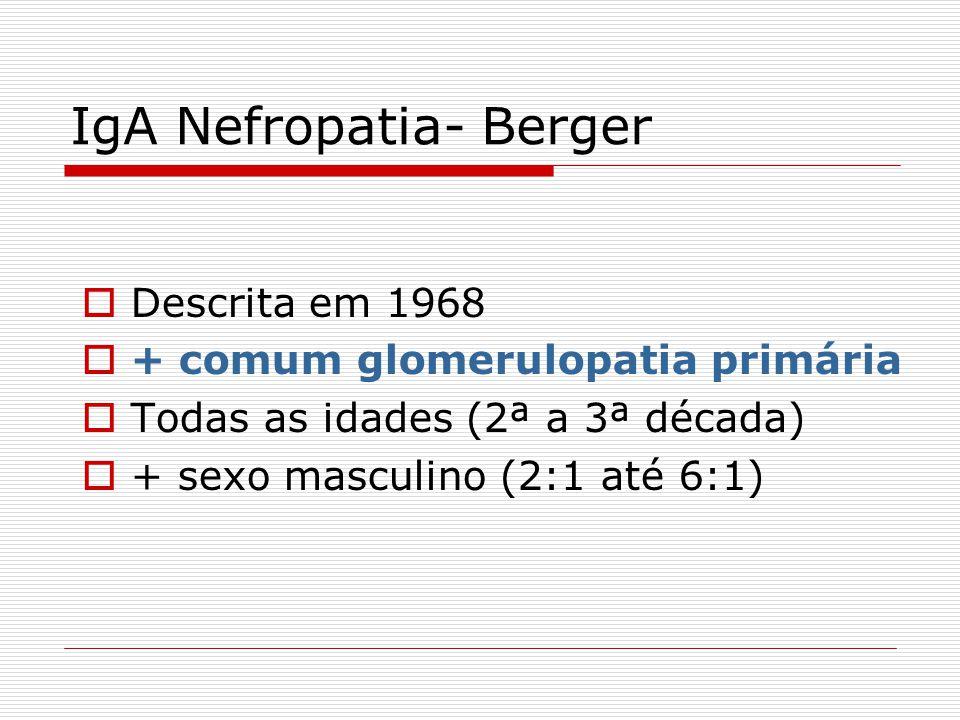 IgA Nefropatia- Berger Descrita em 1968 + comum glomerulopatia primária Todas as idades (2ª a 3ª década) + sexo masculino (2:1 até 6:1)