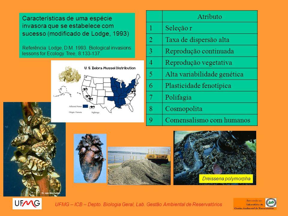 UFMG – ICB – Depto. Biologia Geral, Lab. Gestão Ambiental de Reservatórios Características de uma espécie invasora que se estabelece com sucesso (modi