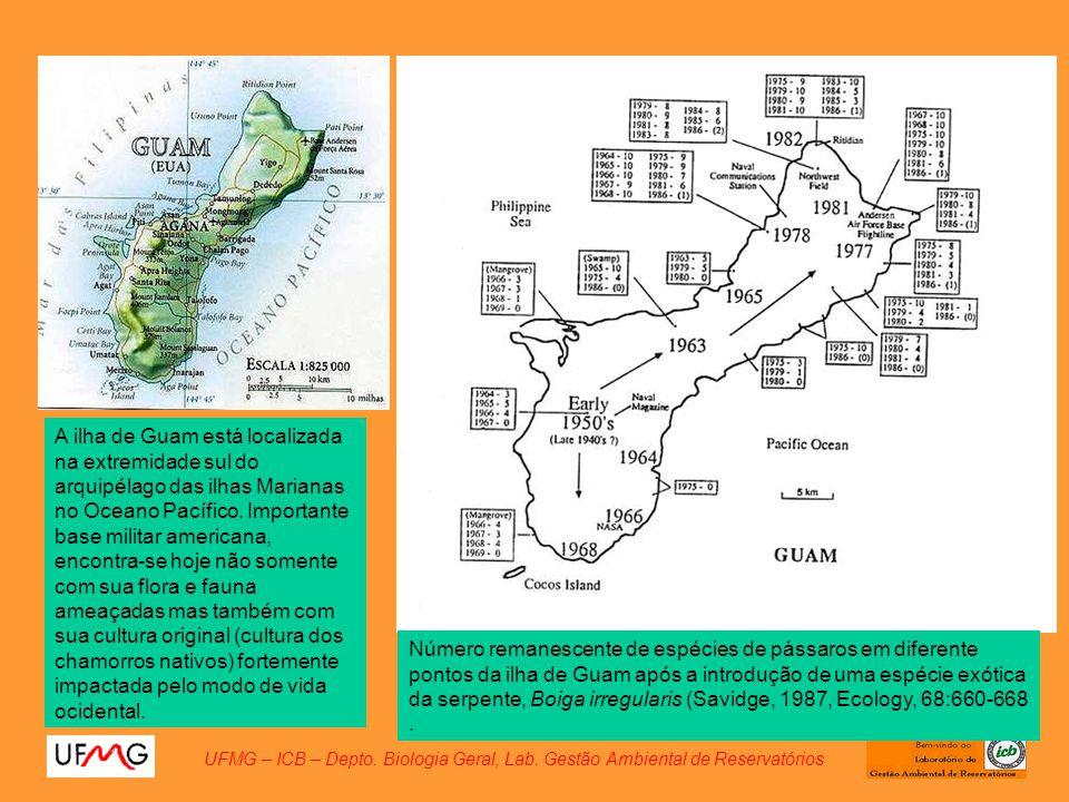 UFMG – ICB – Depto. Biologia Geral, Lab. Gestão Ambiental de Reservatórios Número remanescente de espécies de pássaros em diferente pontos da ilha de