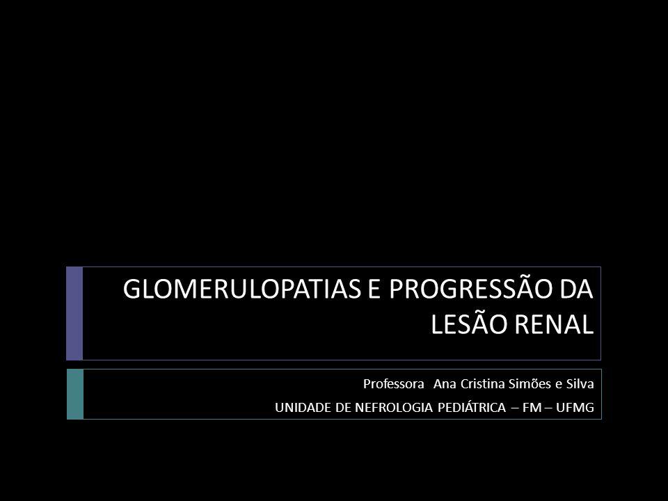 GLOMERULOPATIAS E PROGRESSÃO DA LESÃO RENAL Professora Ana Cristina Simões e Silva UNIDADE DE NEFROLOGIA PEDIÁTRICA – FM – UFMG