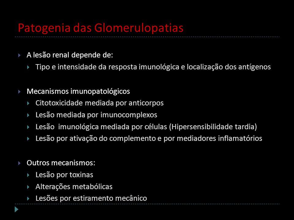 Patogenia das Glomerulopatias A lesão renal depende de: Tipo e intensidade da resposta imunológica e localização dos antígenos Mecanismos imunopatológ