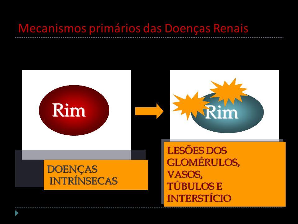 Mecanismos primários das Doenças Renais Rim Rim DOENÇAS INTRÍNSECAS INTRÍNSECAS LESÕES DOS GLOMÉRULOS,VASOS, TÚBULOS E INTERSTÍCIO