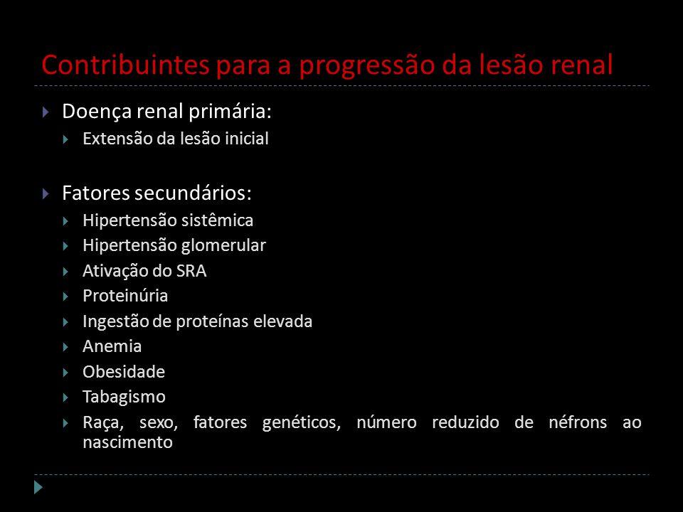 Contribuintes para a progressão da lesão renal Doença renal primária: Extensão da lesão inicial Fatores secundários: Hipertensão sistêmica Hipertensão