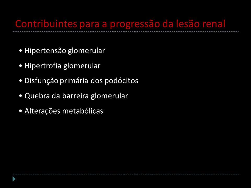 Contribuintes para a progressão da lesão renal Hipertensão glomerular Hipertrofia glomerular Disfunção primária dos podócitos Quebra da barreira glome