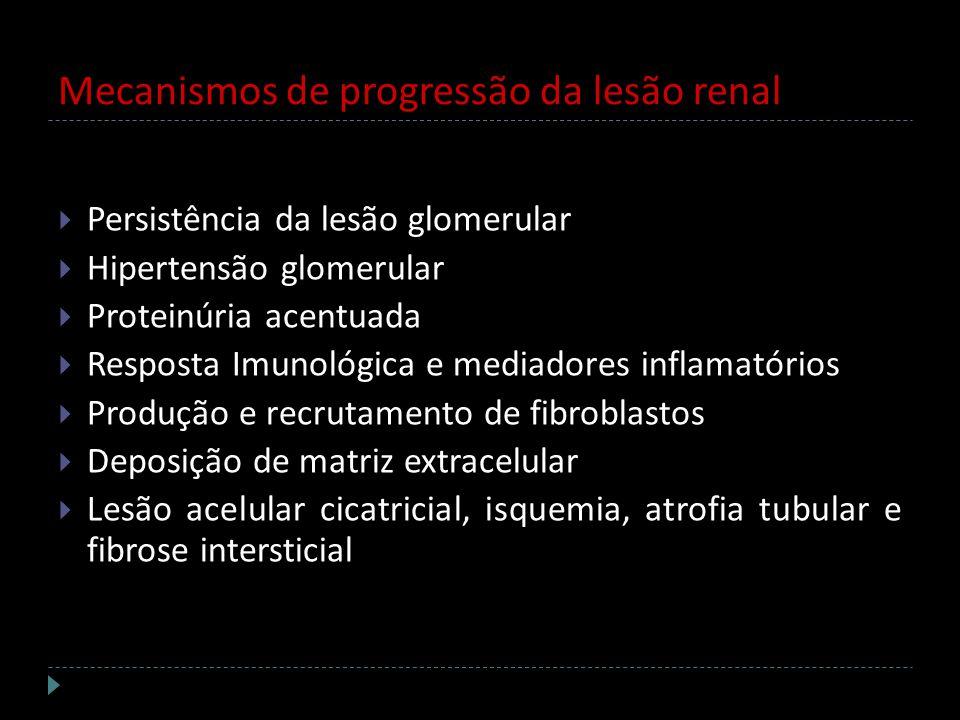 Persistência da lesão glomerular Hipertensão glomerular Proteinúria acentuada Resposta Imunológica e mediadores inflamatórios Produção e recrutamento
