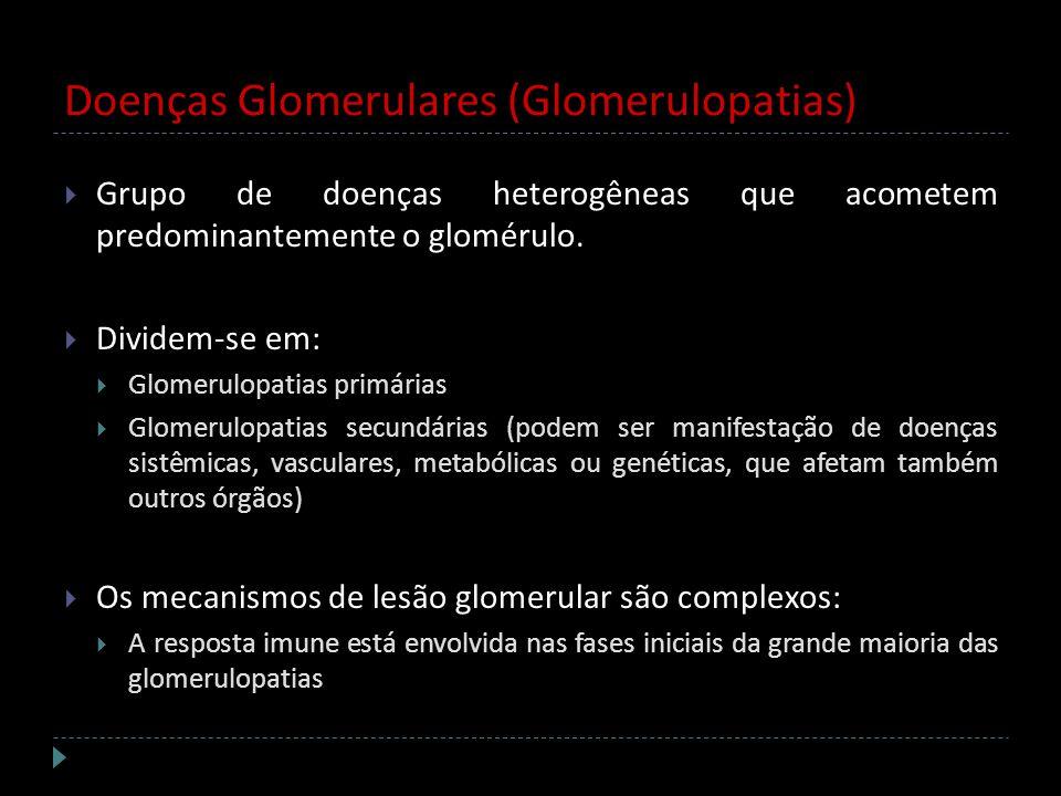 Doenças Glomerulares (Glomerulopatias) Grupo de doenças heterogêneas que acometem predominantemente o glomérulo. Dividem-se em: Glomerulopatias primár
