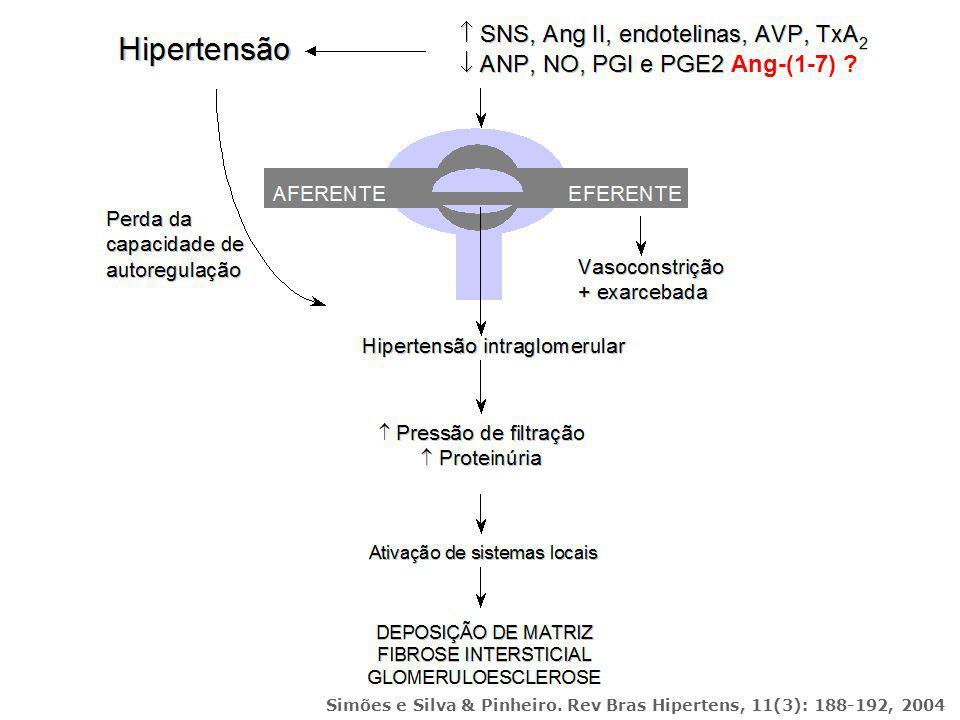 Simões e Silva & Pinheiro. Rev Bras Hipertens, 11(3): 188-192, 2004 Ang-(1-7) ?