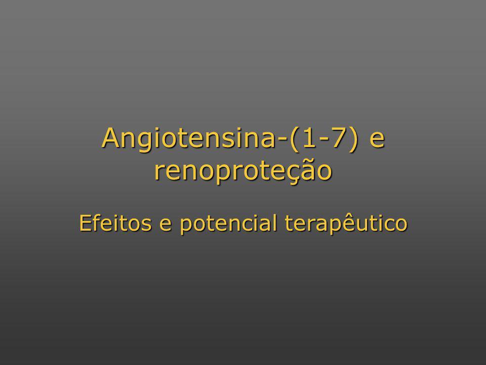 Angiotensina-(1-7) e renoproteção Efeitos e potencial terapêutico