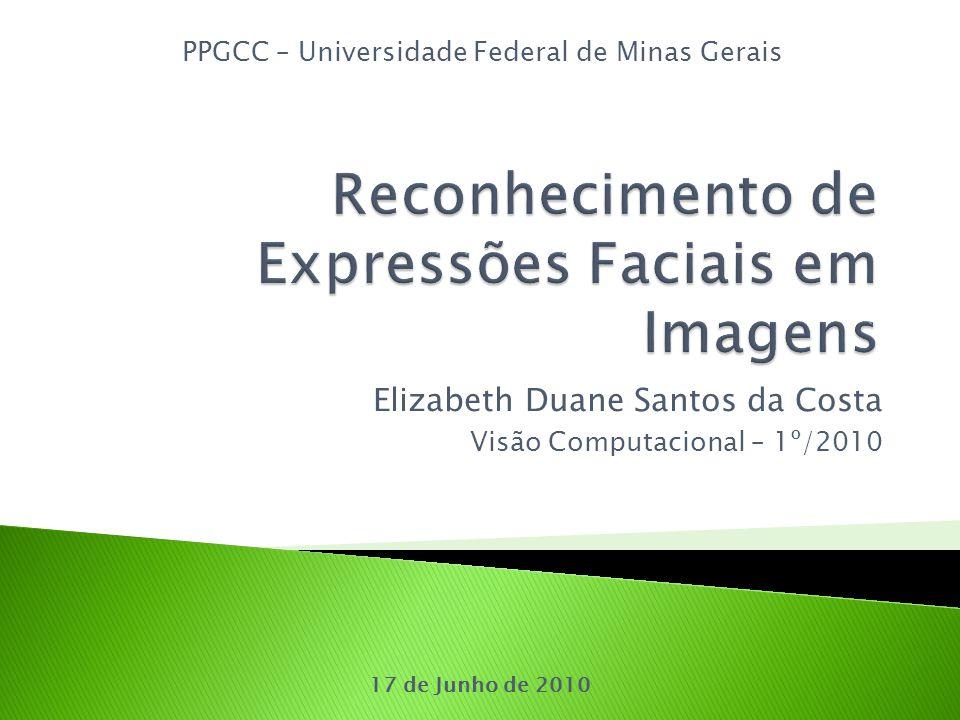 Elizabeth Duane Santos da Costa Visão Computacional – 1º/2010 PPGCC – Universidade Federal de Minas Gerais 17 de Junho de 2010