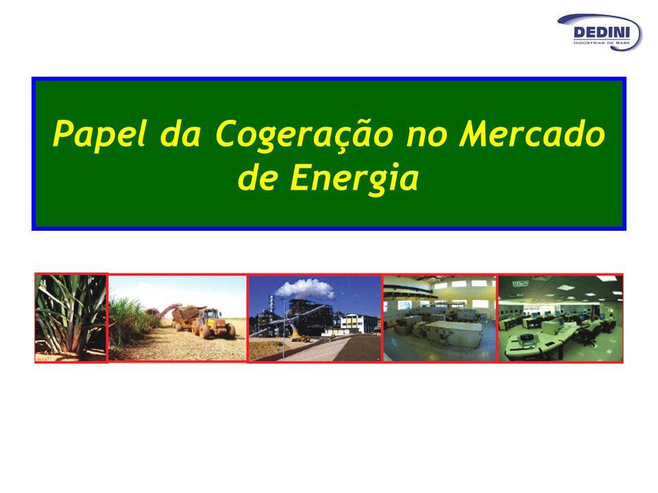 Papel da Cogeração no Mercado de Energia