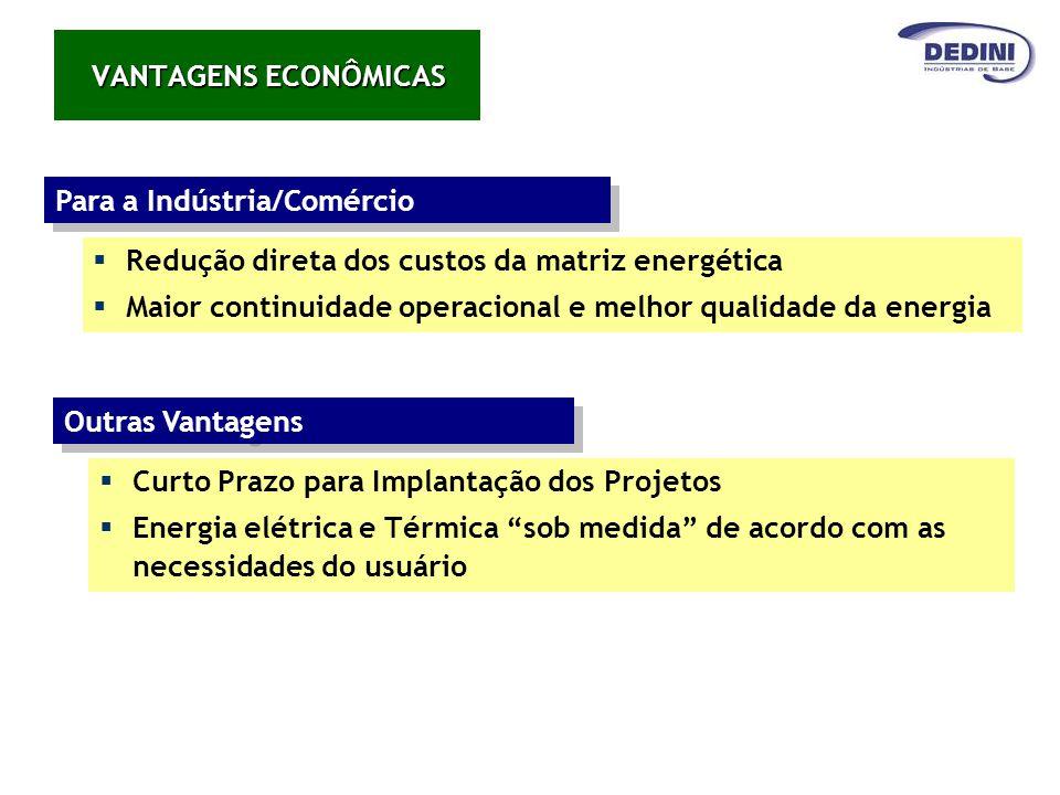 VANTAGENS ECONÔMICAS Para a Indústria/Comércio Redução direta dos custos da matriz energética Maior continuidade operacional e melhor qualidade da ene