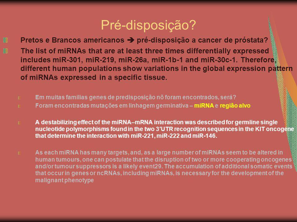 Pré-disposição? Pretos e Brancos americanos pré-disposição a cancer de próstata? The list of miRNAs that are at least three times differentially expre