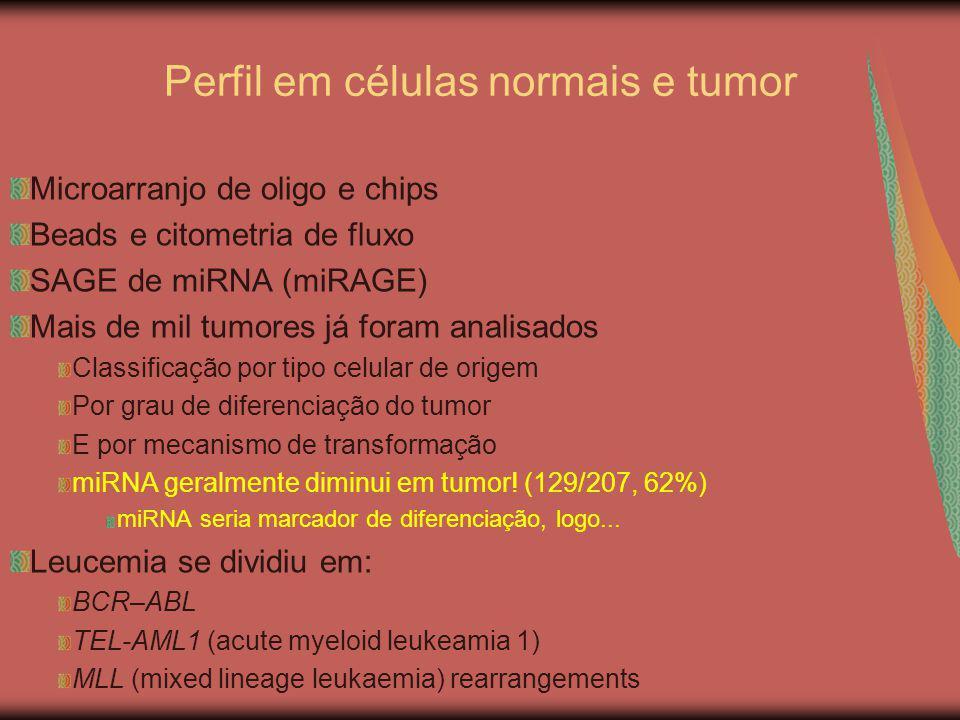 Perfil em células normais e tumor Microarranjo de oligo e chips Beads e citometria de fluxo SAGE de miRNA (miRAGE) Mais de mil tumores já foram analis