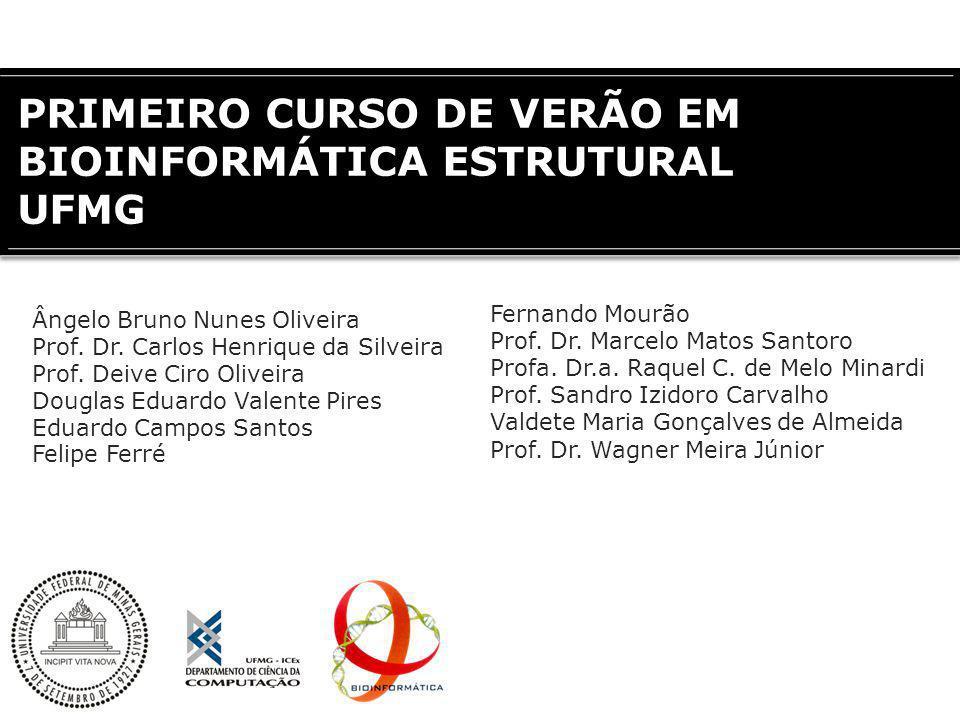 PRIMEIRO CURSO DE VERÃO EM BIOINFORMÁTICA ESTRUTURAL UFMG Ângelo Bruno Nunes Oliveira Prof. Dr. Carlos Henrique da Silveira Prof. Deive Ciro Oliveira