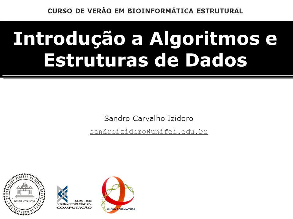 Introdução a Algoritmos e Estruturas de Dados Sandro Carvalho Izidoro sandroizidoro@unifei.edu.br CURSO DE VERÃO EM BIOINFORMÁTICA ESTRUTURAL