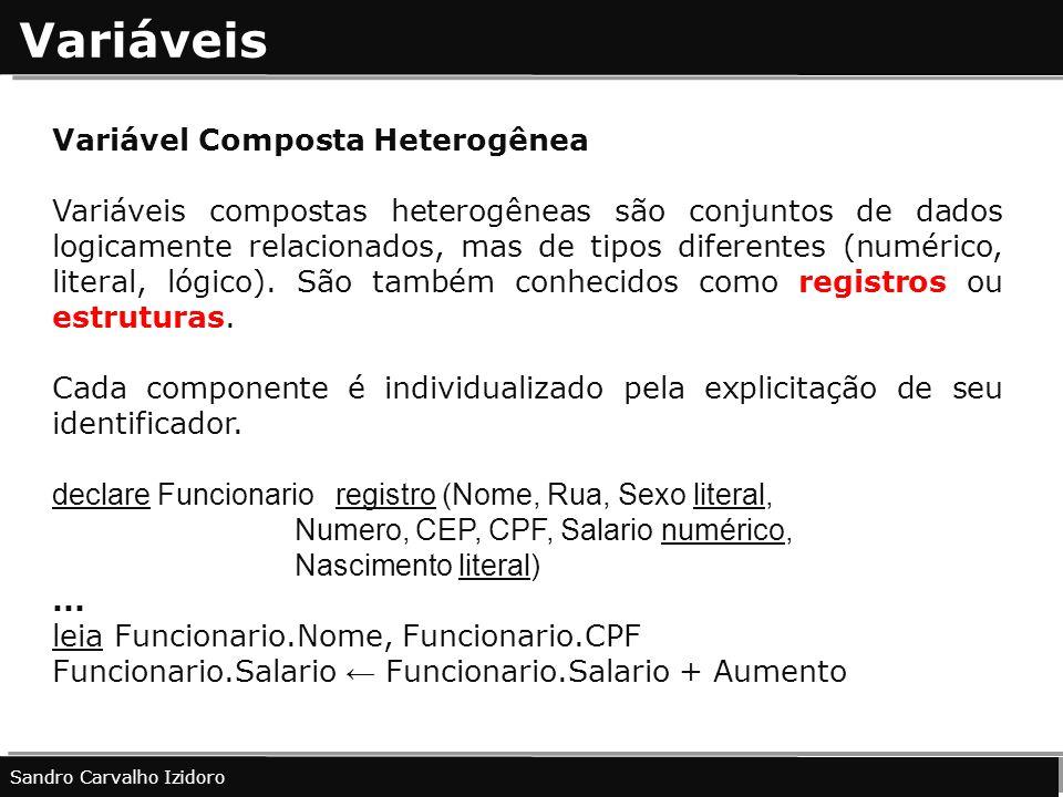 Variáveis Variável Composta Heterogênea Variáveis compostas heterogêneas são conjuntos de dados logicamente relacionados, mas de tipos diferentes (num