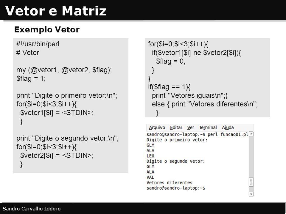 Vetor e Matriz Sandro Carvalho Izidoro Exemplo Vetor #!/usr/bin/perl # Vetor my (@vetor1, @vetor2, $flag); $flag = 1; print