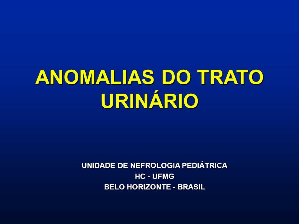 ANOMALIAS DO TRATO URINÁRIO UNIDADE DE NEFROLOGIA PEDIÁTRICA HC - UFMG BELO HORIZONTE - BRASIL