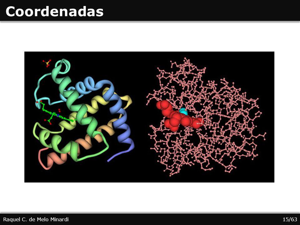 Coordenadas Raquel C. de Melo Minardi15/63