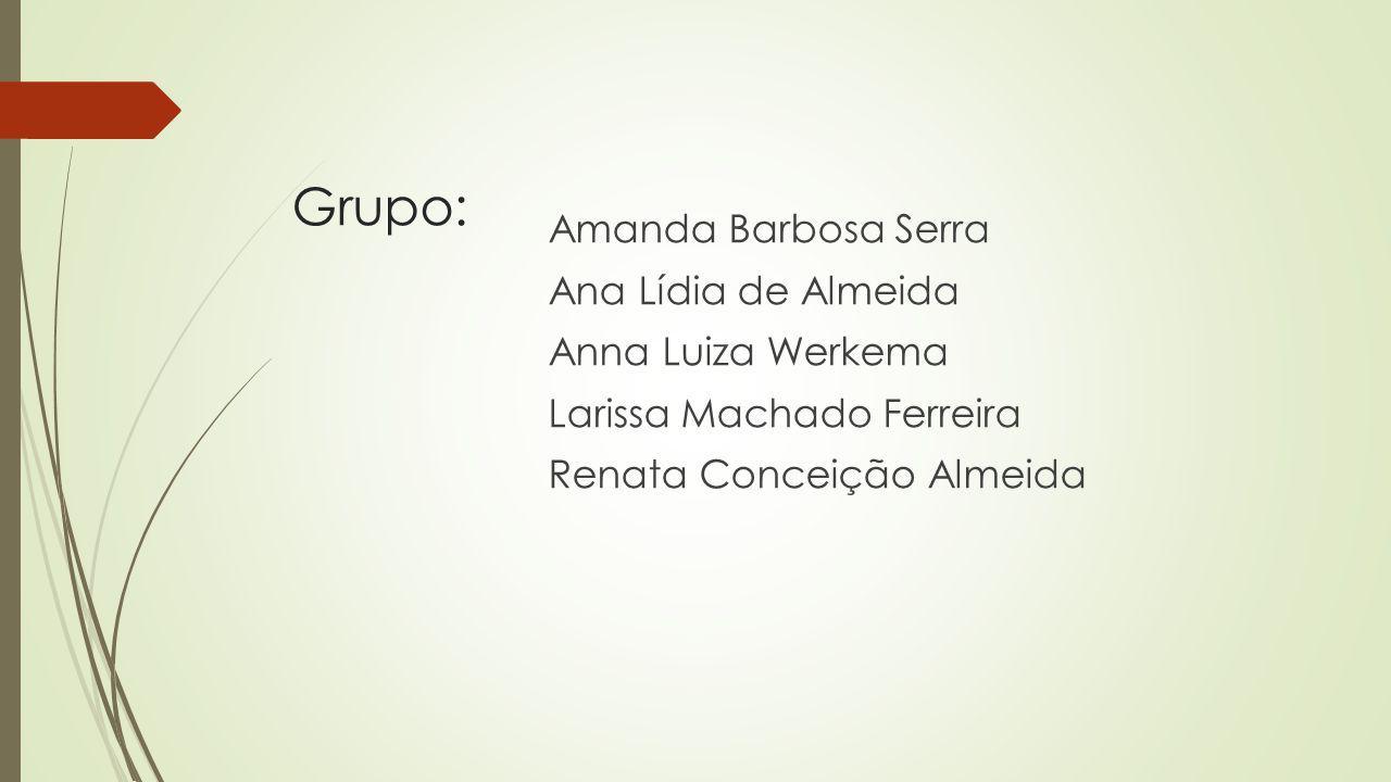 Grupo: Amanda Barbosa Serra Ana Lídia de Almeida Anna Luiza Werkema Larissa Machado Ferreira Renata Conceição Almeida