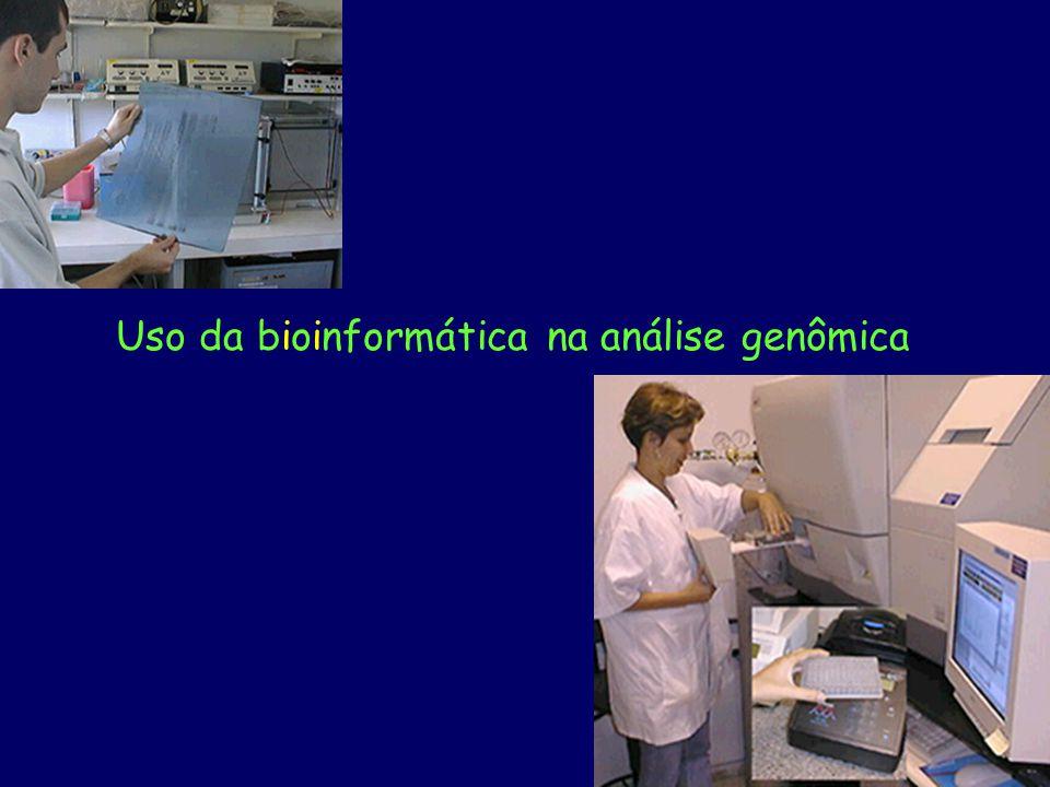 Uso da bioinformática na análise genômica