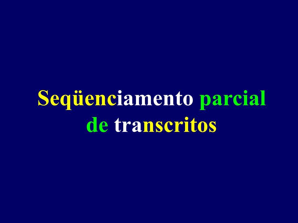 Seqüênciamento de genes expressos: Documentar a existência de transcritos gênicos num transcriptoma [otorrin...