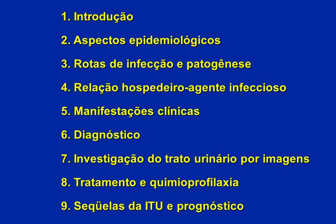 1. Introdução 2. Aspectos epidemiológicos 3. Rotas de infecção e patogênese 4. Relação hospedeiro-agente infeccioso 5. Manifestações clínicas 6. Diagn