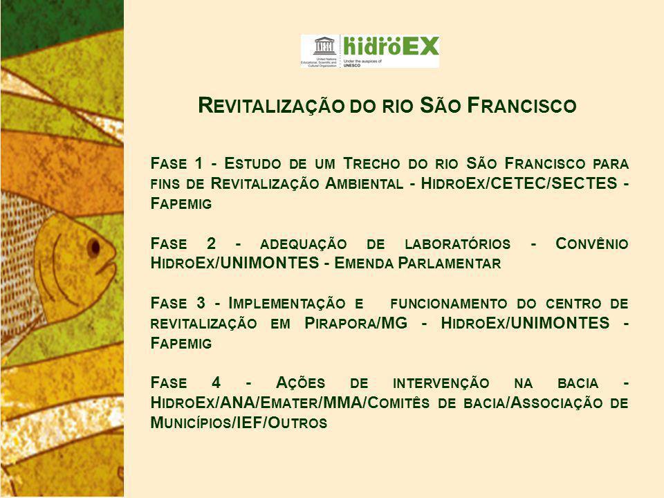 F ASE 1 - E STUDO DE UM T RECHO DO RIO S ÃO F RANCISCO PARA FINS DE R EVITALIZAÇÃO A MBIENTAL - H IDRO E X /CETEC/SECTES - F APEMIG F ASE 2 - ADEQUAÇÃO DE LABORATÓRIOS - C ONVÊNIO H IDRO E X /UNIMONTES - E MENDA P ARLAMENTAR F ASE 3 - I MPLEMENTAÇÃO E FUNCIONAMENTO DO CENTRO DE REVITALIZAÇÃO EM P IRAPORA /MG - H IDRO E X /UNIMONTES - F APEMIG F ASE 4 - A ÇÕES DE INTERVENÇÃO NA BACIA - H IDRO E X /ANA/E MATER /MMA/C OMITÊS DE BACIA /A SSOCIAÇÃO DE M UNICÍPIOS /IEF/O UTROS R EVITALIZAÇÃO DO RIO S ÃO F RANCISCO