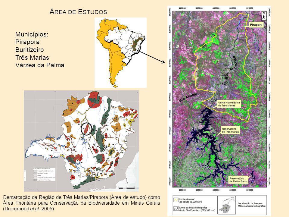 Demarcação da Região de Três Marias/Pirapora (Área de estudo) como Área Prioritária para Conservação da Biodiversidade em Minas Gerais (Drummond et al.