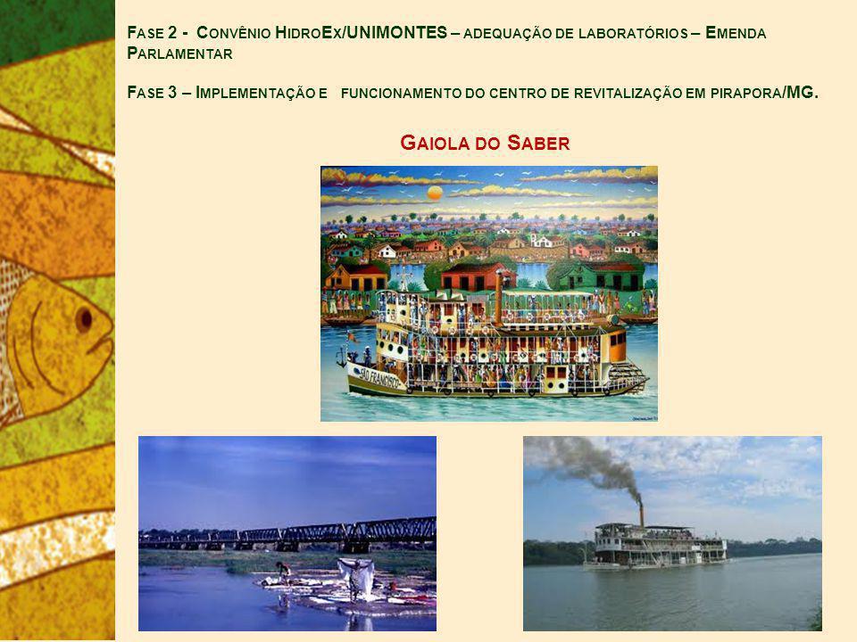 G AIOLA DO S ABER F ASE 2 - C ONVÊNIO H IDRO E X /UNIMONTES – ADEQUAÇÃO DE LABORATÓRIOS – E MENDA P ARLAMENTAR F ASE 3 – I MPLEMENTAÇÃO E FUNCIONAMENTO DO CENTRO DE REVITALIZAÇÃO EM PIRAPORA /MG.