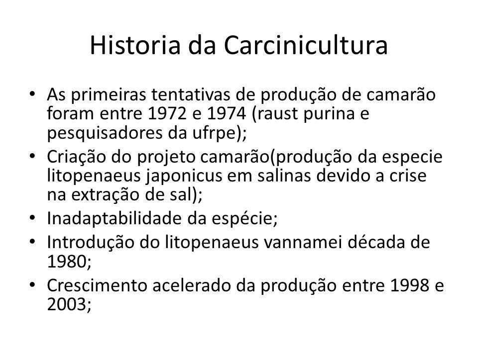 Historia da Carcinicultura As primeiras tentativas de produção de camarão foram entre 1972 e 1974 (raust purina e pesquisadores da ufrpe); Criação do